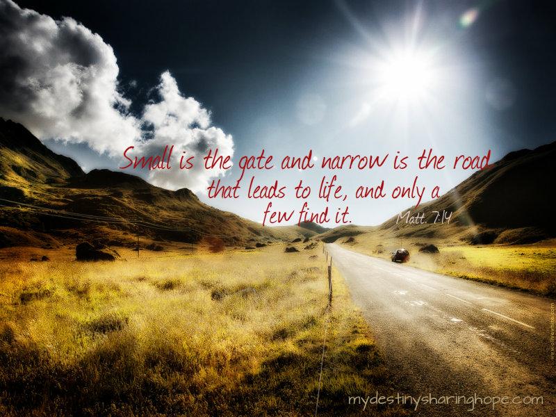 Narrow Road Narrow Path Bible