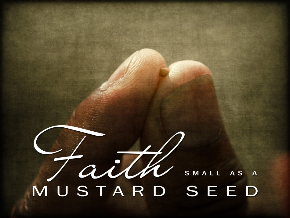 faithofamustardseed