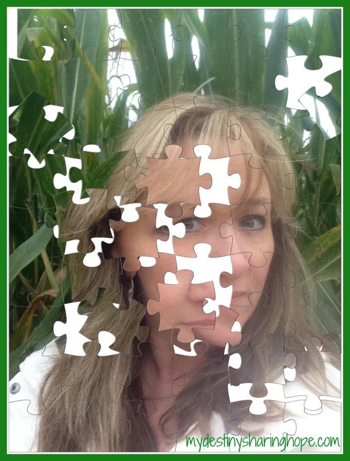 BethPuzzle