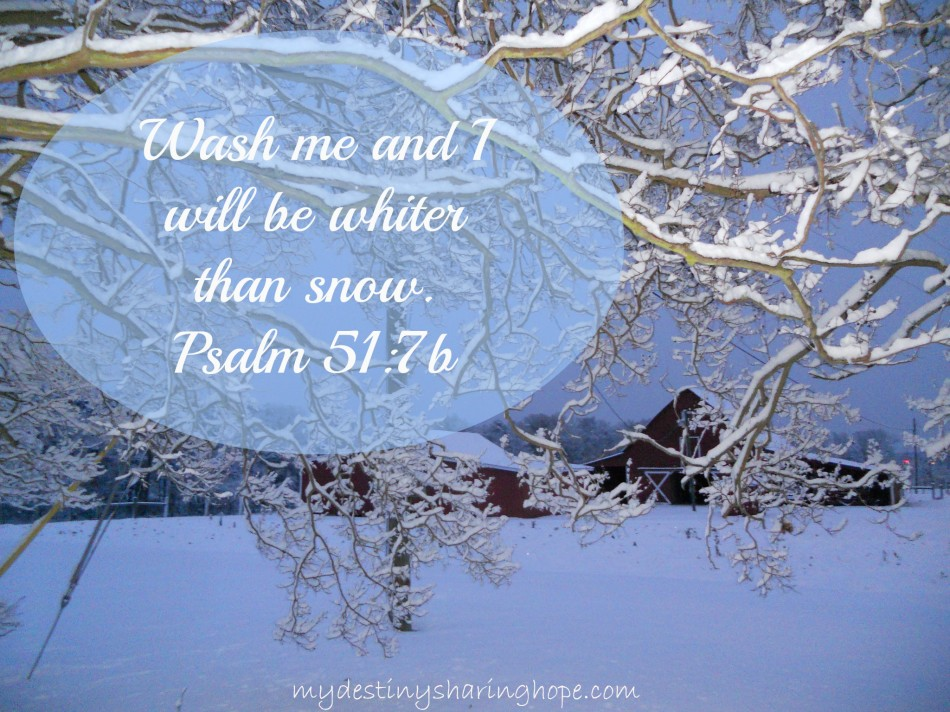 psalm51b